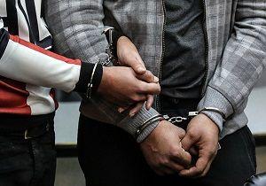 دستگیری ۲ موبایل قاپ و اعتراف آنان به ۴۳ فقره سرقت