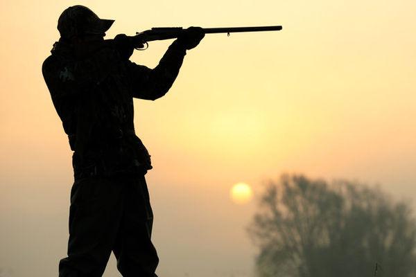 پاسخ سازمان محیط زیست به اظهارات استاد محیط زیست درباره شکار