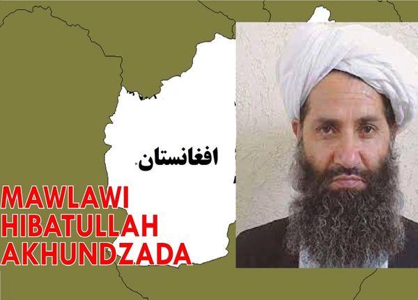 رهبر طالبان را بشناسید  + عکس