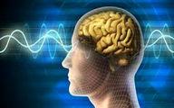 خوراکی های مرگ آور مغزی را بشناسید