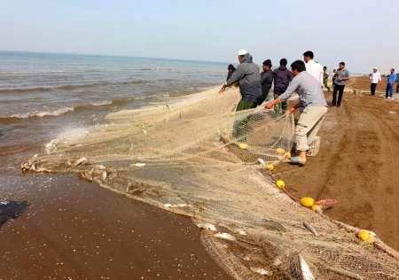 گلستانی ها 254هزار تن ماهی صید کردند
