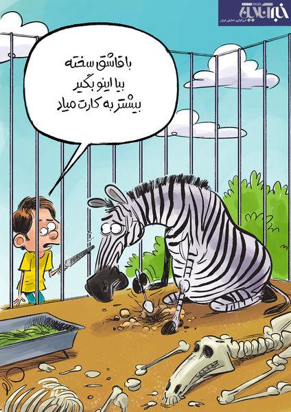 گورخرهای آفریقایی در حال فرار1/ کاریکاتور