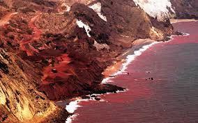 مرگ دردناک یک گردشگر در جزیره هرمز