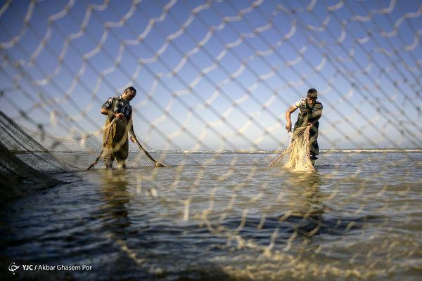 فصل صید ماهی در دریای خزر