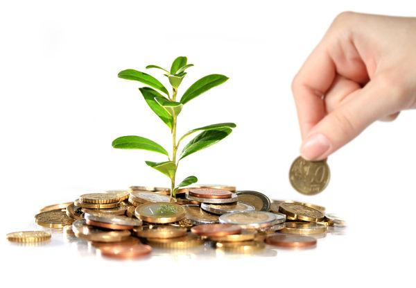 نحوه جذب سرمایه و افزایش خط اعتباری بانک توسعه تصویب شد