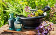 تقویت ایمنی بدن با این ۴ گیاه+ فیلم