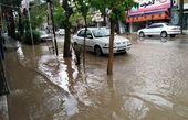هواشناسی ایران ۹۹/۱/۲۹| پیش بینی بارشهای ۵ روزه در اکثر مناطق کشور
