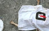 مرگ مرموز فرزندان یک خانواده کرمانی