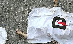 سقوط مرگبار از سیلو در رامهرمز