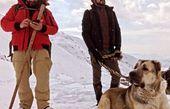 حامد کمیلی و امین حیایی در کوهستان برفی + عکس