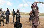 ابداع وحشتناک داعش برای کشتار