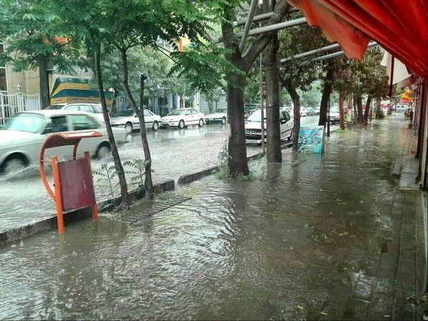 اینستاگرام:: روش جدید جمع آوری آب باران