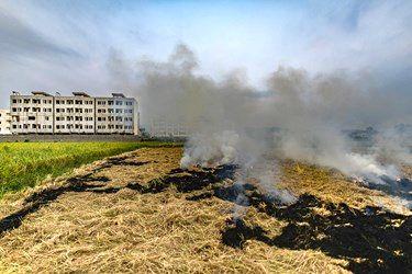 آتش زدن زمین علاوه بر آسیب جدی به خاک در مناطق مسکونی باعث ایجاد الودگی هوا میشود