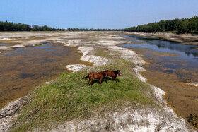 آب بندان لپو زاغمرز در روزهایی که در حال خشک شدن است.