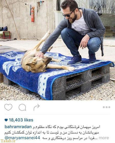 بازی بهرام رادان با سگ شیطون+عکس