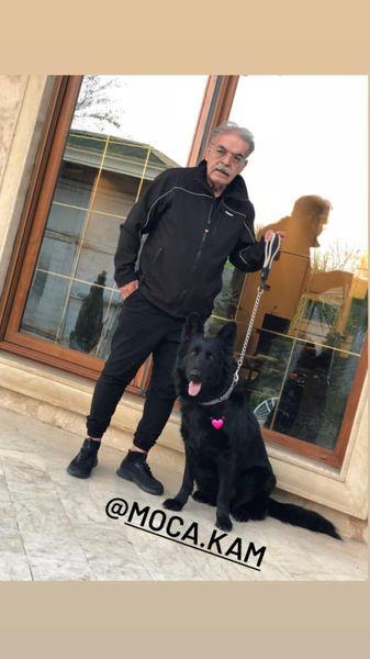 سگ خاص حمید لولایی + عکس
