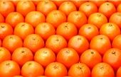 کیفیت تاثیر ویتامین C  در درمان بیماری کرونا