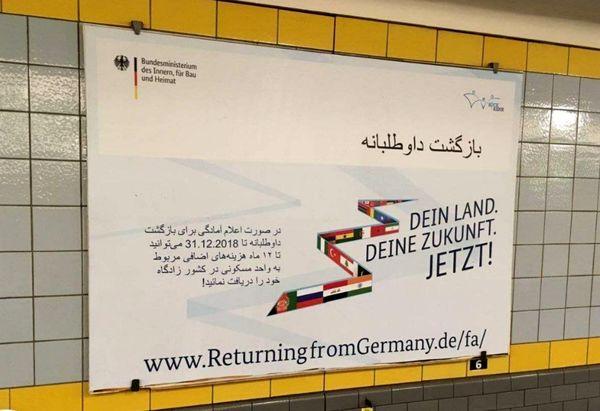 پول یک سالتان را هم میدهیم، برگردید کشورتان!