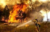 سرباز وظیفه در جریان مهار آتش سوزی در ایلام جان باخت