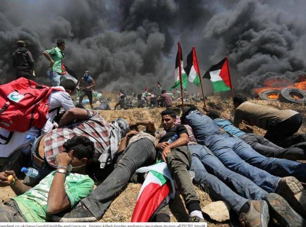 """سازمان ملل: هر تظاهرکننده فلسطینی """"در معرض کشته شدن"""" است"""