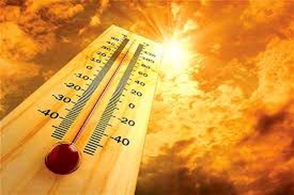 مواد غذایی برای مقابله با گرمای تابستان