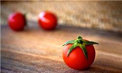 قیمت رب گوجه فرنگی 500 تومان کاهش یافت