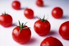 تصویری دیدنی از گوجههای سرخ+ عکس
