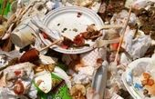 دور ریختن غذا در عربستان جریمه دارد