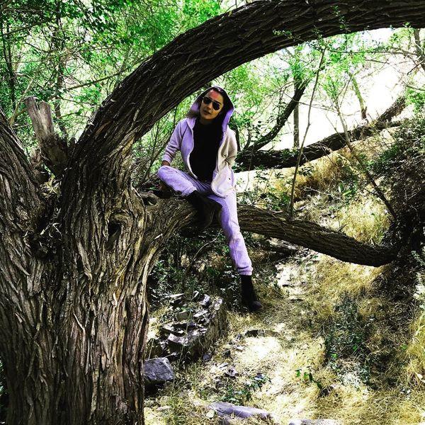 السا فیروز آذر در شاخ زندگی+عکس