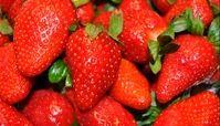 ۵ خوراکی مفید برای حل فراموشی