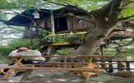 خانه درختی زیبای شبنم فرشادجو + عکس