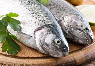 راههای تشخیص ماهی تازه