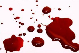 بازداشت ۸ متهم در پرونده درگیری منجر به قتل در پارک دانشجو