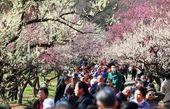 رویش دوباره طبیعت در چین+ عکس