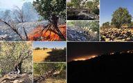 دستگیری عوامل حریق مراتع کوهدشت لرستان