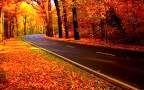 طبیعت رنگارنگ پاییزی جاده چالوس