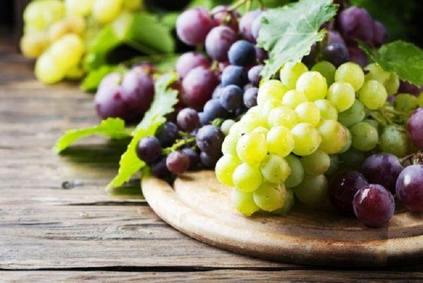 انگور را به رژیم غذایی خود اضافه کنید
