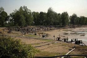 موتورهای آب جهت تامین آب کشت برنج زمینهای منطقه زاغمرز به وفور در اطراف این آببندان قرار دارند و در روزها و ساعات مشخص آب را از آب بندان به زمینهای کشاورزی انتقال میدهند.