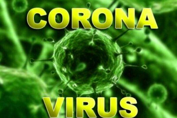 دانشمندان به دنبال بررسی منشاء ویروس کرونا