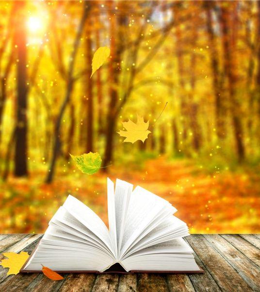 کتابهای کانون بر بالهای «مداد آبی» پرواز کردند