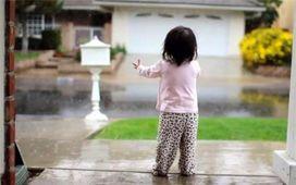 درختان ايستاده مي ميرند؛ دعاي باران بخوانيم