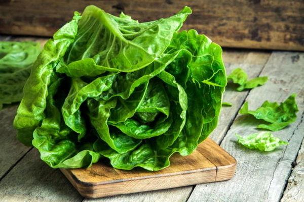 برای کاهش وزن این سبزی ها را بخورید