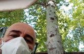 روزهای پرخطر کرونایی برای مهران احمدی + عکس