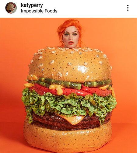 همبرگر کیتی پری