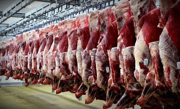گوسفند چینی وارد بازار کشور شده است
