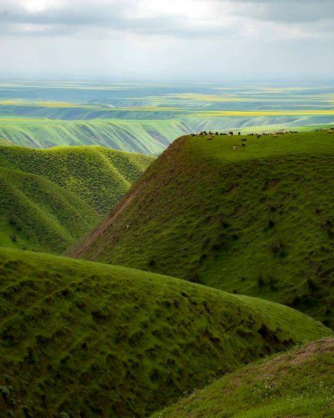 تصویر فوق العاده رویایی از ترکمن صحرا + عکس