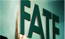 موافق و مخالف اصلی FATF در یک قاب +عکس