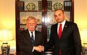 بولتون با نخست وزیر گرجستان دیدار کرد