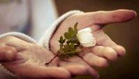 جایگاه مهربانی در اسلام