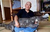 34 سال زندگی مشترک با حیوانی خطرناک! +تصاویر